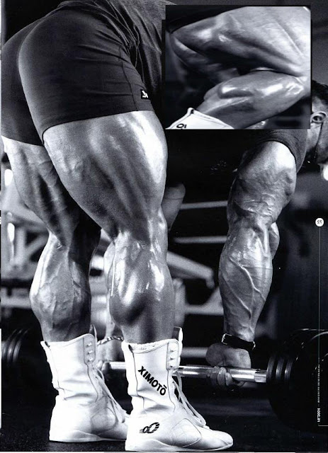 training legs