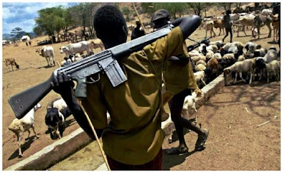 Herdsmen reportedly return to Nimbo community, threaten to unleash more terror on community members