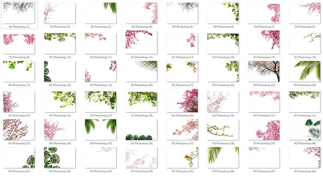 Botany Overlay