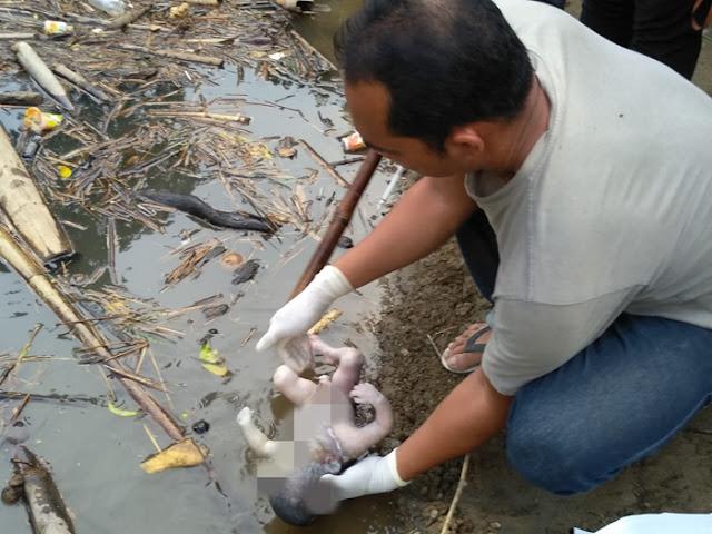 Tega! Mayat Bayi Laki-laki Ditemukan Membusuk di Sungai Gunungsari, Lombok Barat