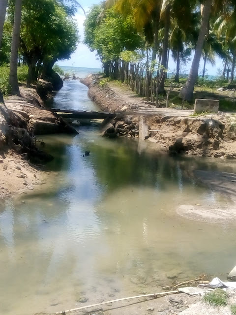 Duicker Ambruk di Kampung Nane, Dampak Penambangan Pasir Secara Ilegal di Selayar