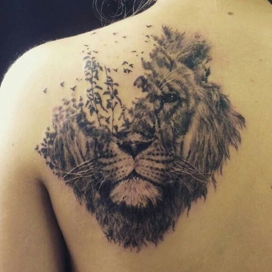 Awesome Lion Shoulder Tattoos