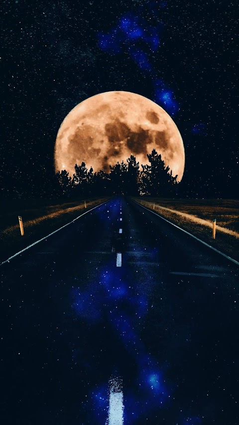 Road in the night