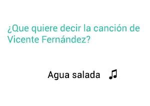 Significado de la canción Agua Salada Vicente Fernández Chente.