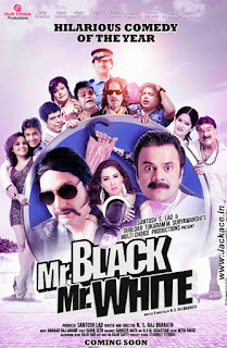 Mr. Black Mr. White First Look Poster 2