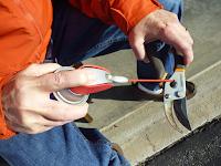 hand tools, gardening
