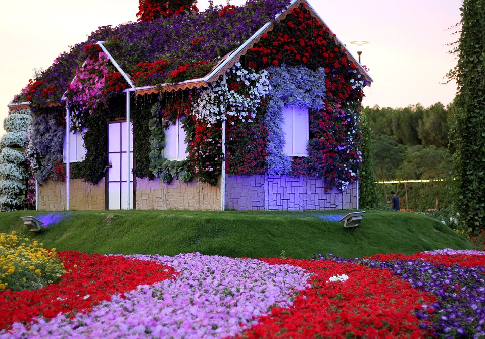 Travel stories: Dubai Miracle Garden