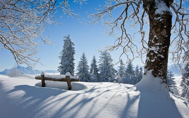 Winterlandschap met een pak sneeuw