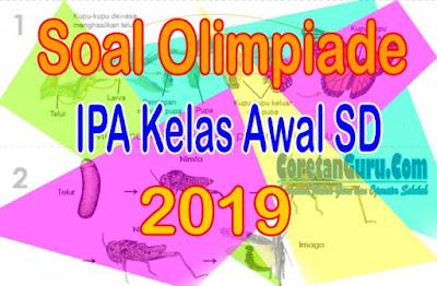 Soal Olimpiade IPA SD Kelas Rendah 2019 dan Kunci Jawaban