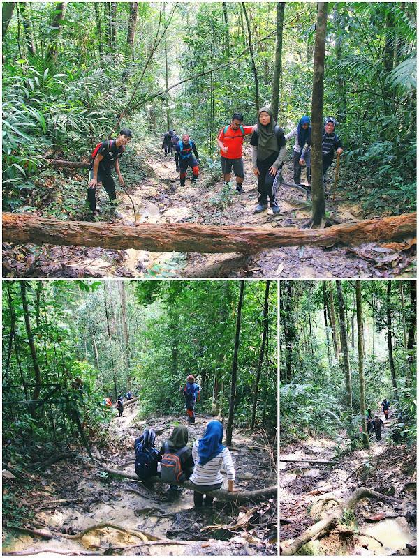 Trek mendaki Gunung Angsi via Ulu Bendul 3