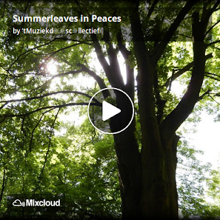 https://www.mixcloud.com/straatsalaat/summerleaves-in-peaces/