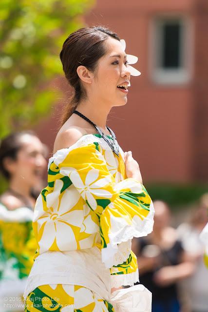 マロニエ祭り、カハレフラ&タヒチスタジオの写真 10