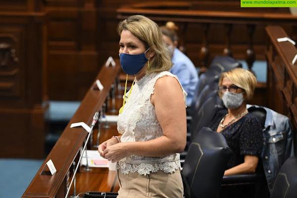 Vanoostende defiende que las Directrices de Ordenación del Suelo Agrario protegen el territorio y son compatibles con la Ley de Islas Verdes