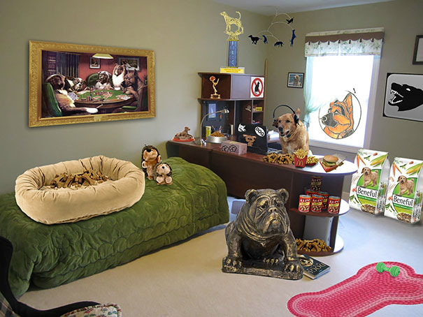 40 Photos Of The Most Hilarious Parents You Will Ever Meet - My Dad Said My Dog Took Over My Room After I Left For College...