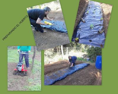 Preparando el huerto