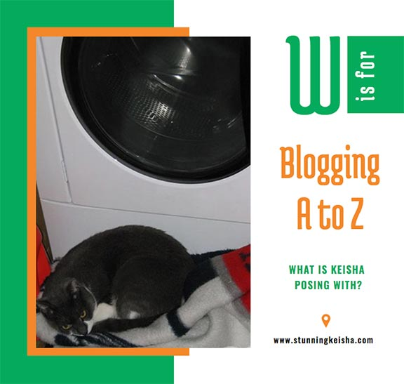 Blogging From A to Z: W is for …