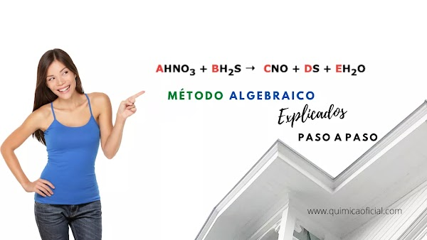 ▷ HNO3 + H2S →  NO + S + H2O Solución ✅ por el Método Algebraico