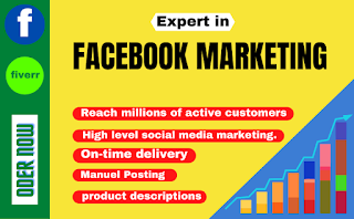 I will do increase any business through facebook marketing