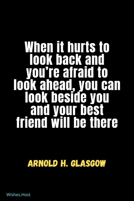 Famous Friendship Quotes