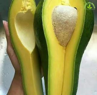 manfaat buah alpukat | 9 Manfaat Alpukat untuk Kesehatan, Kamu Bisa Makan Setiap Hari | manfaat buah alpukat untuk ibu hamil | manfaat buah alpukat untuk diet | manfaat buah alpukat untuk bayi | manfaat buah alpukat untuk wajah | manfaat buah alpukat bagi kesehatan | manfaat buah alpukat bagi ibu hamil | manfaat buah alpukat untuk pria