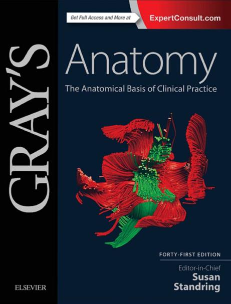 Gray's Anatomy. Forty-First Edition, 41e