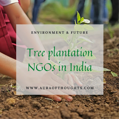 tree ngos in india - auraofthoughts