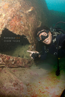 Scuba Diving, Underwater Photography, Learn Scuba