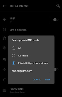 Private DNS