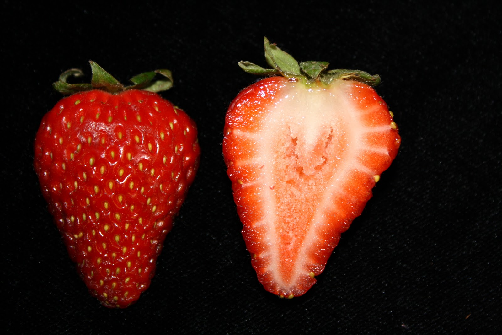 strawberry fruit diagram samsung home theatre wiring aggregate pictures to pin on pinterest