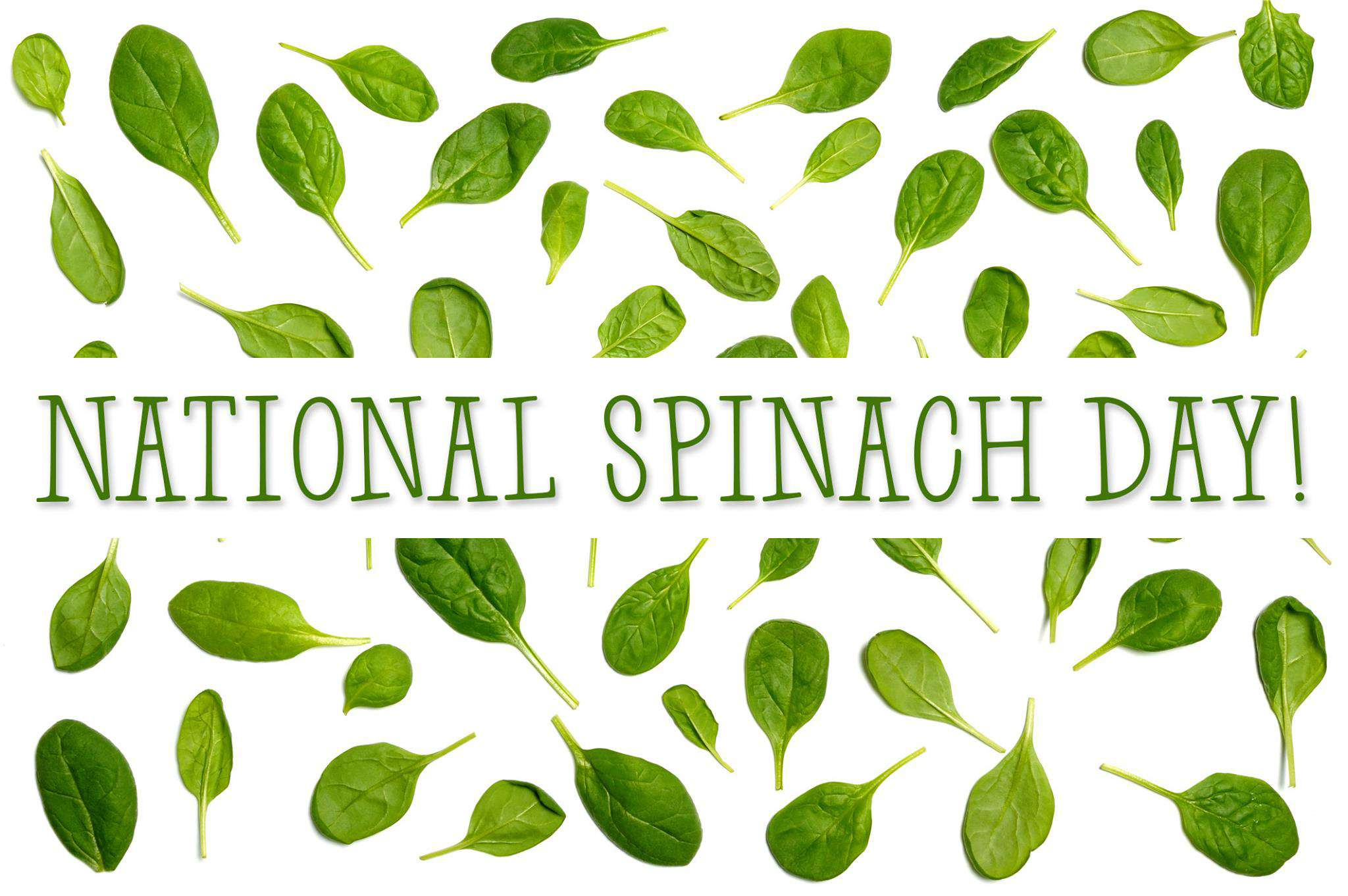 National Spinach Day Wishes Beautiful Image