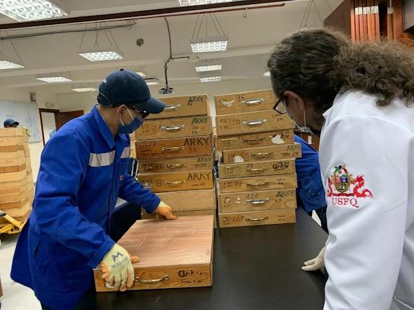 Piezas arqueológicas pertenecientes a la Cultura Valdivia son devueltas al Ecuador luego de casi 40 años