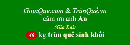Trùn quế La Sơn