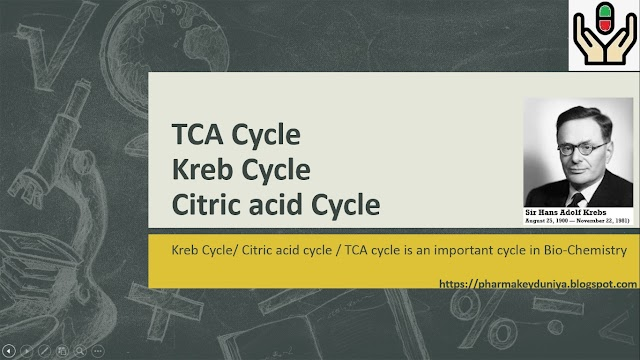 KREB CYCLE / CITRIC ACID CYCLE / TCA CYCLE