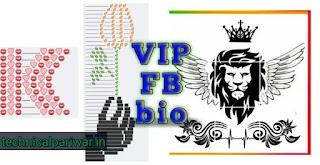 Best vip stylish bio for fb