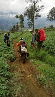 Petani naik motor