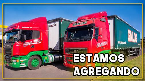 Gmlog Transportes está agregando veículos Truck
