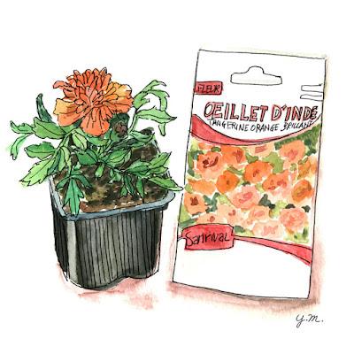 Morigolds by Yukié Matsushita