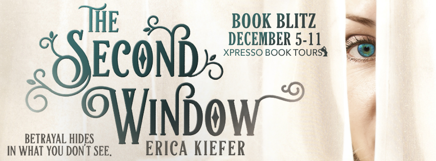 The Second Window Book Blitz