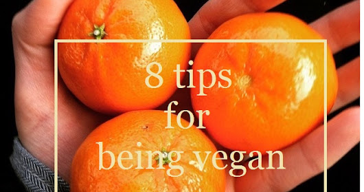 Top 8 Tips for Being Vegan