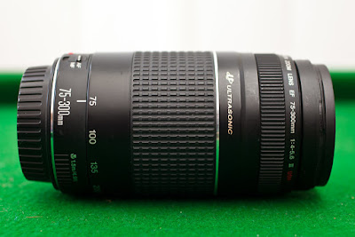 Best Canon Camera Lens EF 75 300mm Zoom | Zooming with ZeeZoom