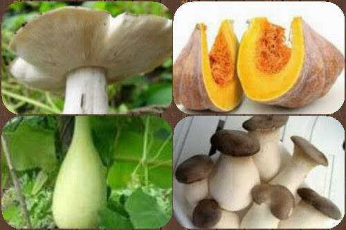 Makanan Alami Untuk MeningkatkanKekebalan Tubuh Terhadap Penyakit