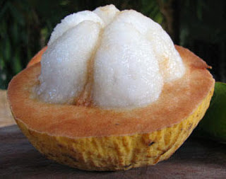 Jeruk buah setul buah setoi, jeruk buah setoi, resepi jeruk buah setoi, resepi jeruk setoi,