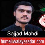 https://humaliwalaazadar.blogspot.com/2019/09/sajjad-mahdi-nohay-2020.html