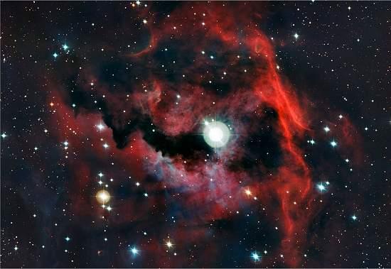 Nebulosa da Gaivota e as Cores de Uma Maternidade Estelar