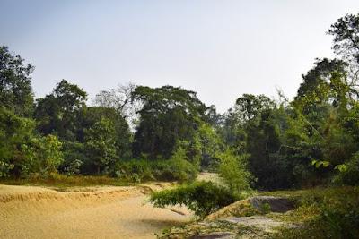 Satchari National park habiganj sylhet
