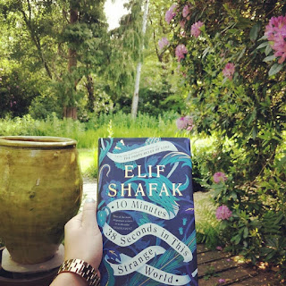 10 Minutes 38 Seconds in This Strange World by Elif Shafak on Nikhilbook image 8