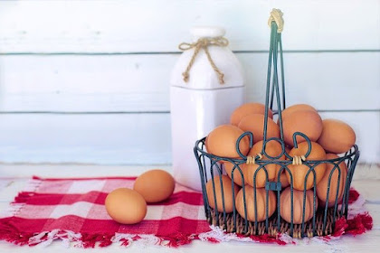 5 Myths About Eggs It Turns Not True