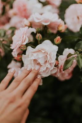Manos cuidadas tocando unas flores