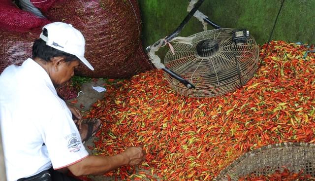 Harga Melambung, Pedagang di Daerah Ini Temukan Cabe Rawit Dicat Warna