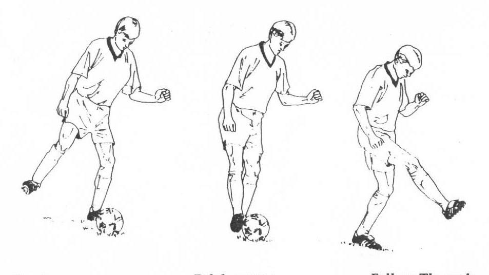 Teknik Mengoper Bola Sepak Menggunakan Kaki Bagian Dalam Luar Dan Punggung Bangun Badan
